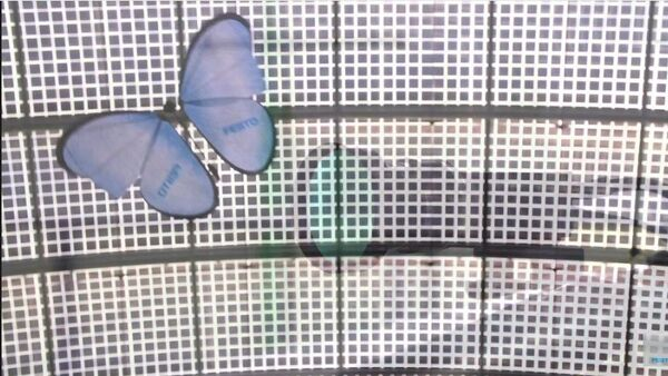La mariposa electrónica - Sputnik Mundo