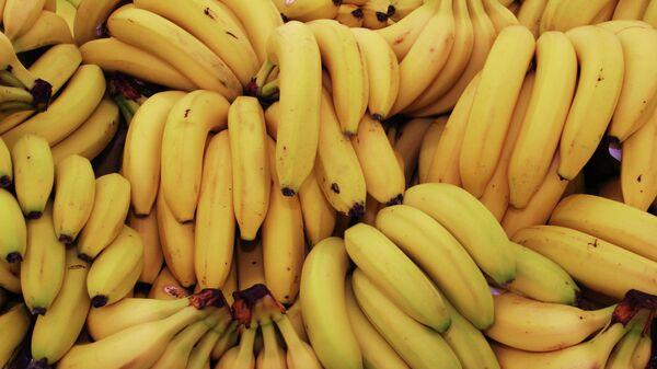 Plátanos (imagen referencial) - Sputnik Mundo