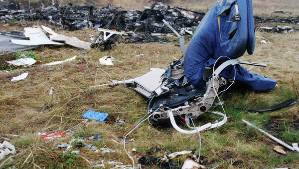 Los restos del avión MH17 derribado en el este de Ucrania - Sputnik Mundo
