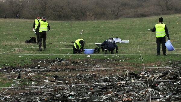 Restos del Boeing 777 de Malaysia Airlines, siniestrado en Donbás - Sputnik Mundo