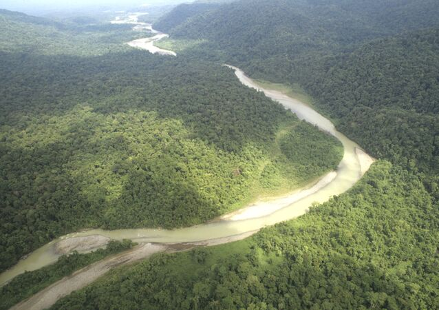 Alemania destinará 57 millones de dólares a proteger la Amazonía