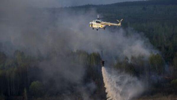 Incendio en la zona de exclusión de Chernóbil - Sputnik Mundo