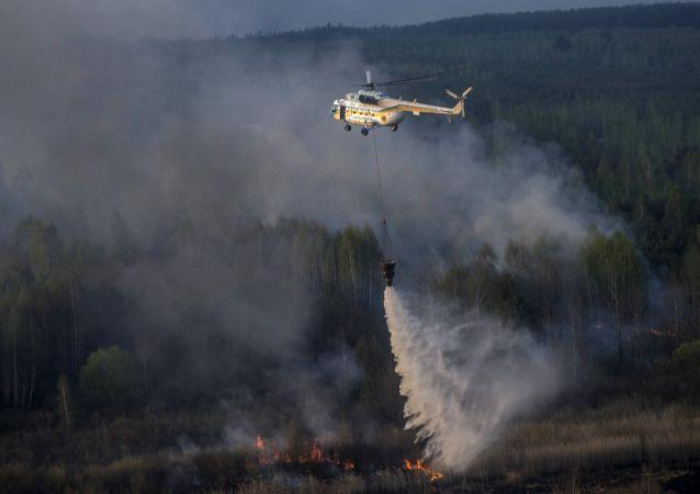 Incendio en la zona de exclusión de Chernóbil