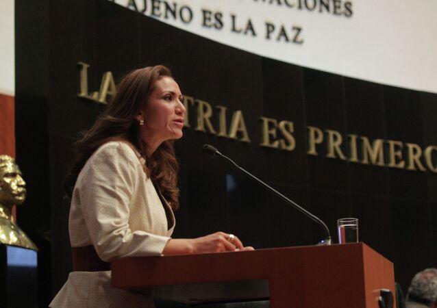 La senadora Sonia Rocha resaltó la incorporación de Registro Nacional de Datos de personas desaparecidas