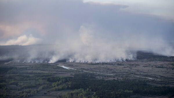 Incendio en Chernóbil - Sputnik Mundo