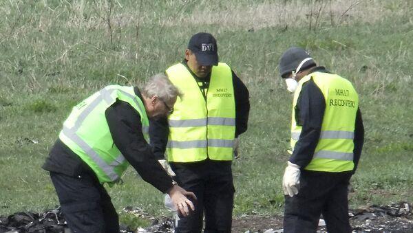 Se da por concluida la recogida de fragmentos del MH17 en Donbás - Sputnik Mundo