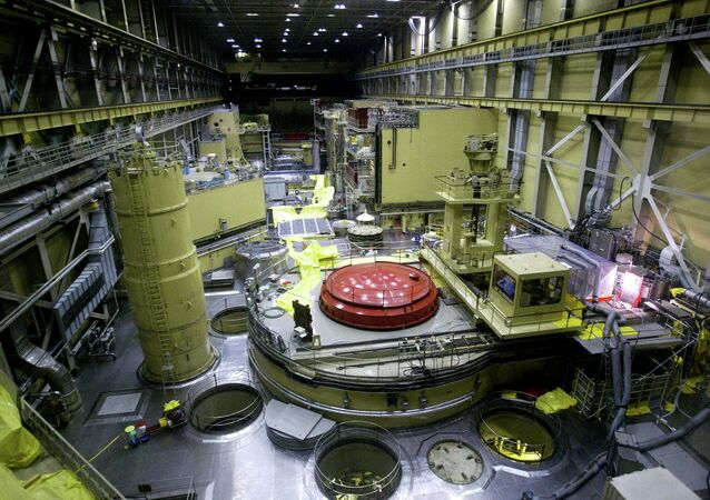 Central nuclear de Paks (archivo)