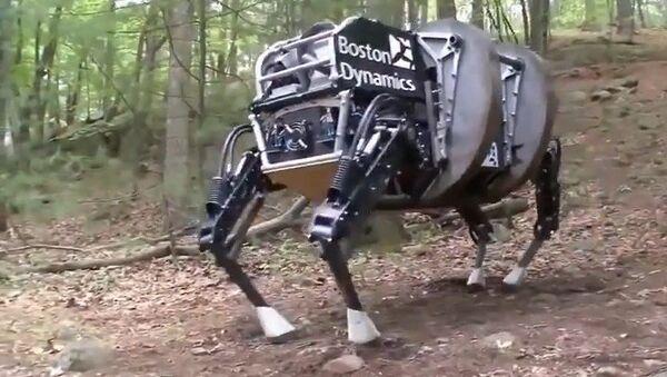El Terminator se hace realidad - Sputnik Mundo