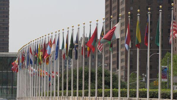 Banderas de los Estados Miembros de las Naciones Unidas frente de la sede de la ONU en Nueva York - Sputnik Mundo