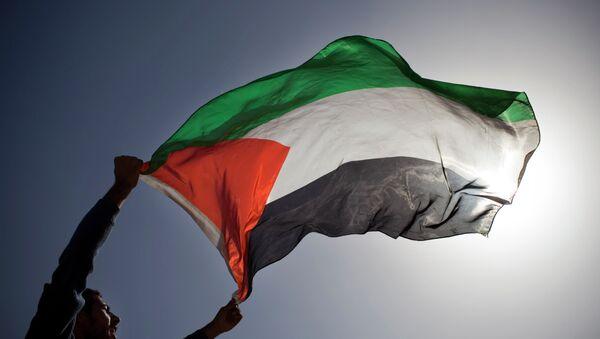 A Palestinian demonstrator waves a Palestinian flag. - Sputnik Mundo