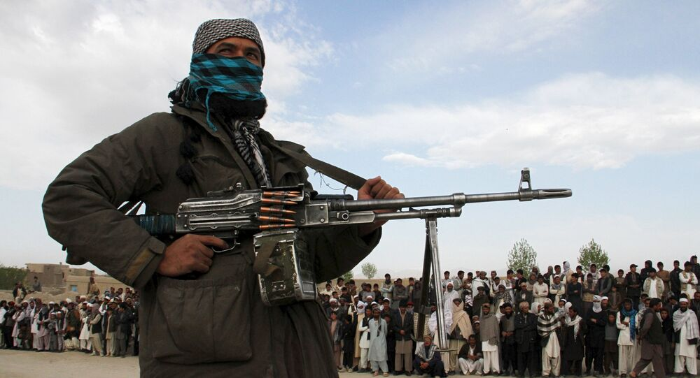 Miembro del movimiento Talibán (archivo)