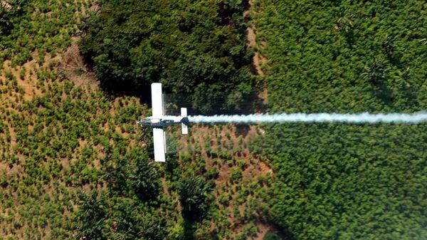 Fumigación de plantacion de coca - Sputnik Mundo