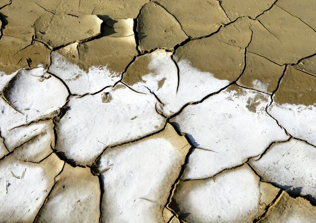 Sequía (archivo)