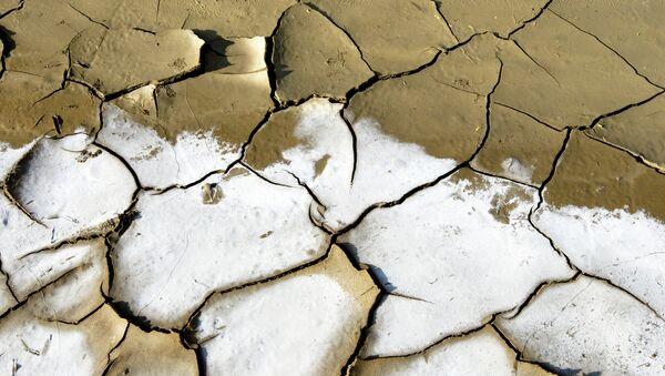 Sequía (archivo) - Sputnik Mundo