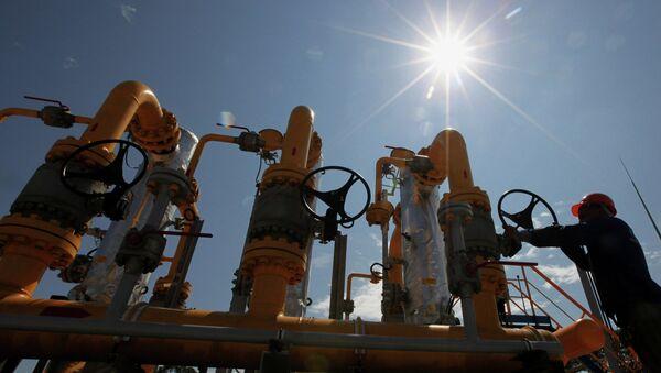 Bolivia invita a presidente ruso Putin a Foro de Países Exportadores de Gas - Sputnik Mundo