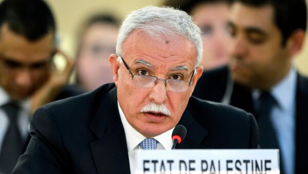 Riad al-Maliki, ministro de Exteriores de Palestina (archivo) - Sputnik Mundo