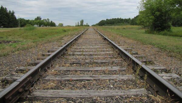 Provincia china propone construir ferrocarril de alta velocidad hasta Vladivostok - Sputnik Mundo