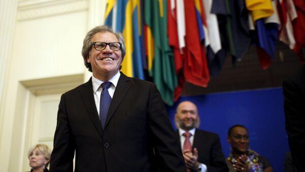 Luis Almagro, Secretario General de la OEA - Sputnik Mundo
