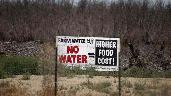 California sufre la más devastadora sequía desde hace cuatro años. 5 de mayo de 2015 - Sputnik Mundo
