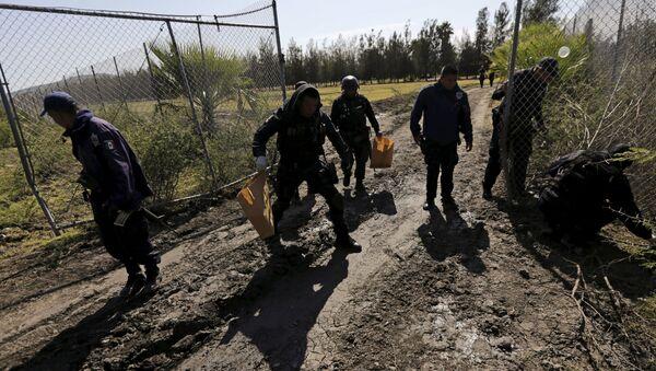 Policías mexicanos en Jalisco - Sputnik Mundo