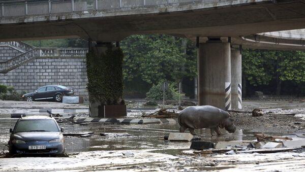 Al menos 11 muertos debido a inundaciones en Tiflis - Sputnik Mundo