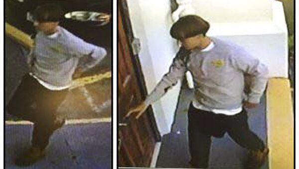 Dylann Roof, sospechoso del tiroteo en Charleston - Sputnik Mundo