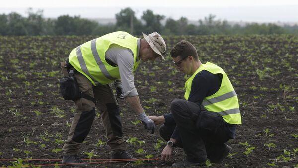 Equipo holandés arriba a Donetsk para investigar el derribo del MH17 - Sputnik Mundo