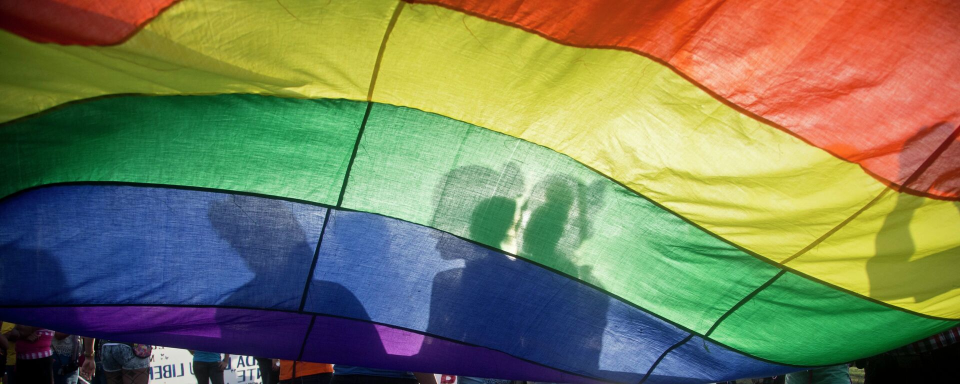 Members of the LGBT movement hold a gay pride flag as they attend a march to mark the International Day Against Homophobia in Managua, Nicaragua, Sunday, May 17, 2015. - Sputnik Mundo, 1920, 12.03.2021