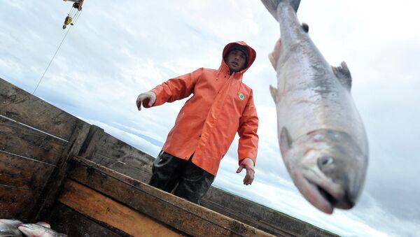 Pesca del salmón - Sputnik Mundo