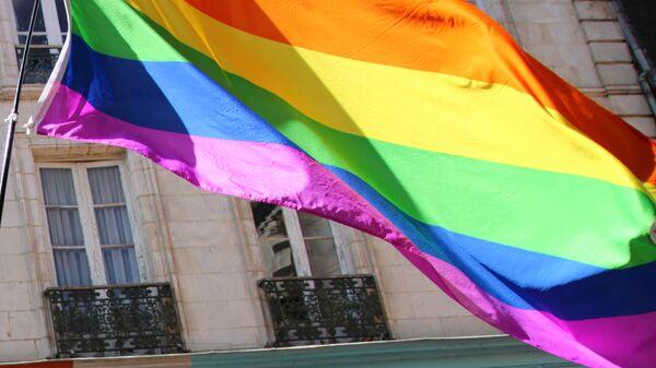 Bandera de LGBT - Sputnik Mundo