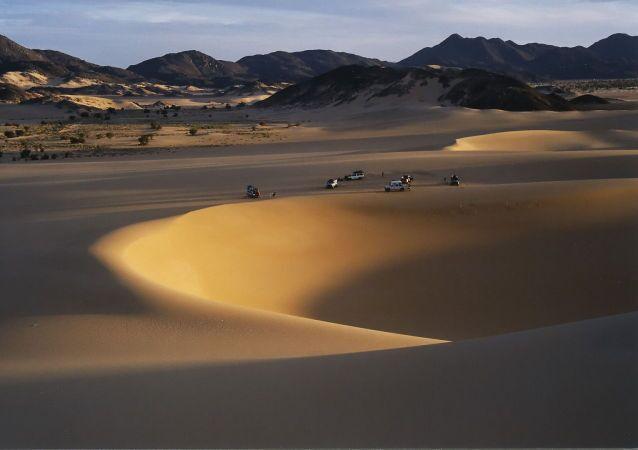 Unas dehesas en el Sáhara
