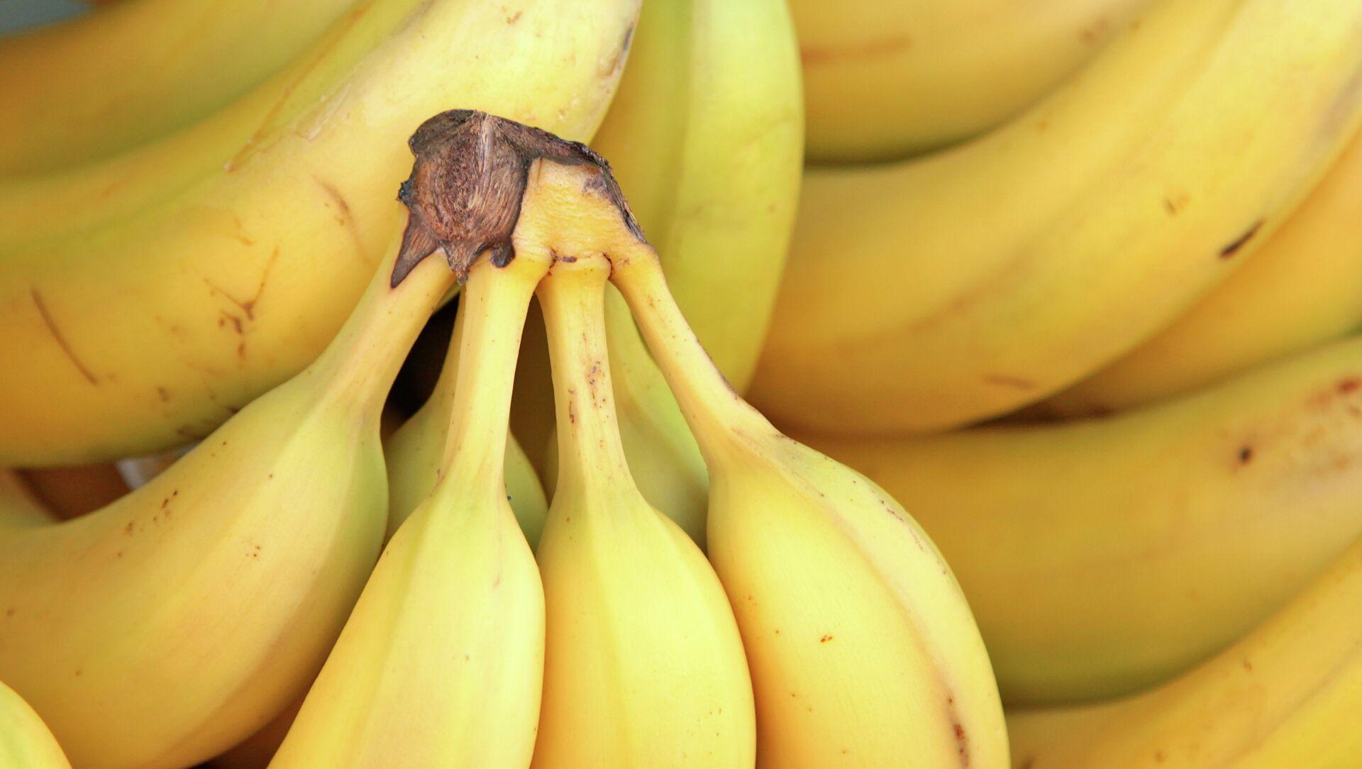 Bananas (imagen referencial) - Sputnik Mundo, 1920, 31.10.2017