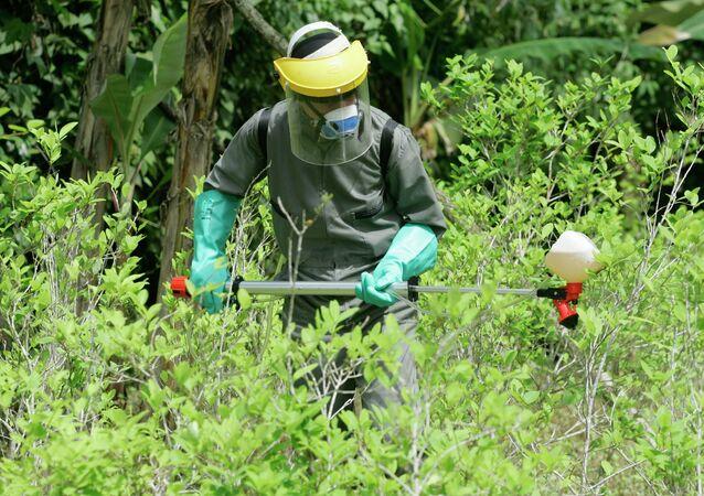 Policía antidrogas en una planta de coca
