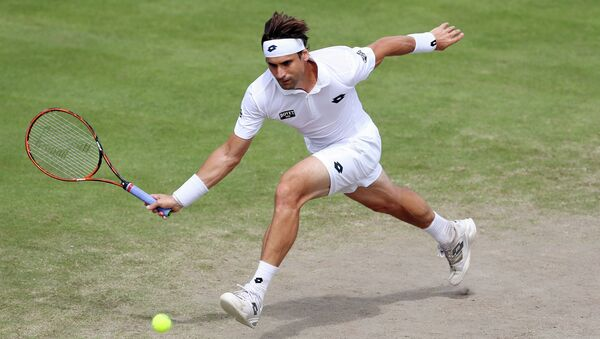 David Ferrer, tenista español - Sputnik Mundo