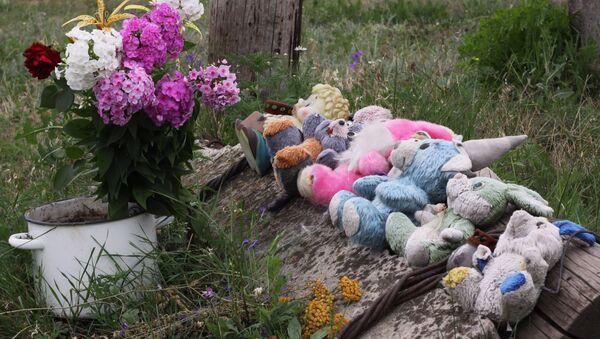 Lugar de la catástrofe del vuelo de MH17 en Ucrania - Sputnik Mundo