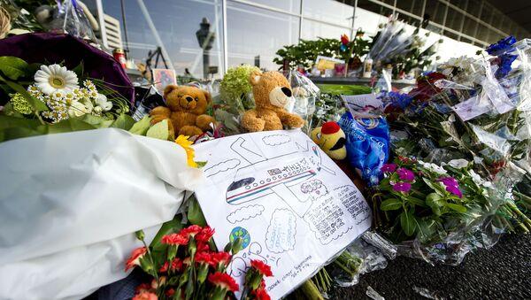 Rusia se esforzará para que se sepa la verdad sobre la caída del MH17 - Sputnik Mundo