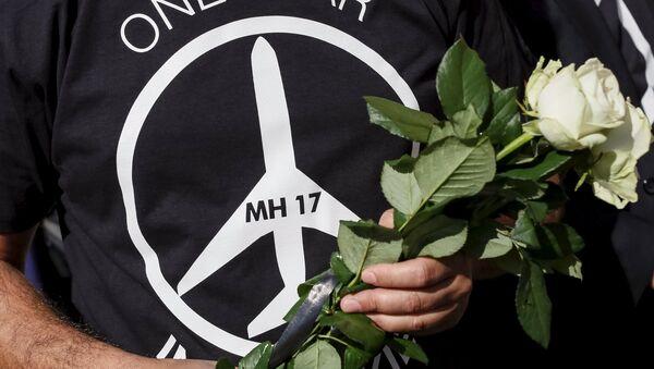 La ICAO creó base de datos sobre las zonas de conflicto por el MH17 - Sputnik Mundo
