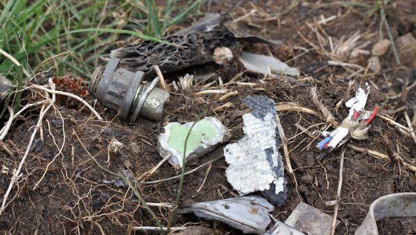 Lugar del siniestro del MH17 en la región de Donetsk - Sputnik Mundo