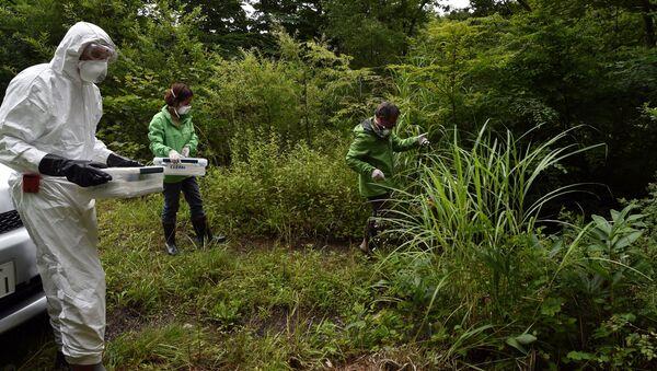Investigadores de Greenpeace recogen muestras de tierra en la prefectura de Fukushima - Sputnik Mundo