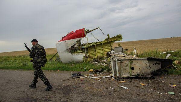 Lugar del accidente del avión MH17 en el este de Ucrania - Sputnik Mundo