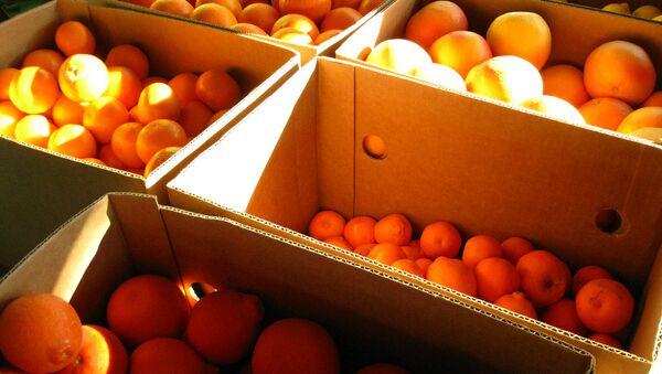 Rusia teme una avalancha de alimentos en los mercados mundiales - Sputnik Mundo