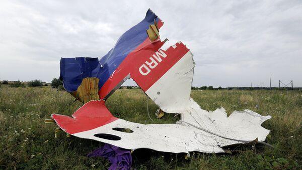Lugar del siniestro del MH17 en el este de Ucrania (archivo) - Sputnik Mundo