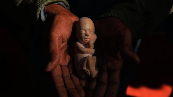 Modelo de un feto - Sputnik Mundo