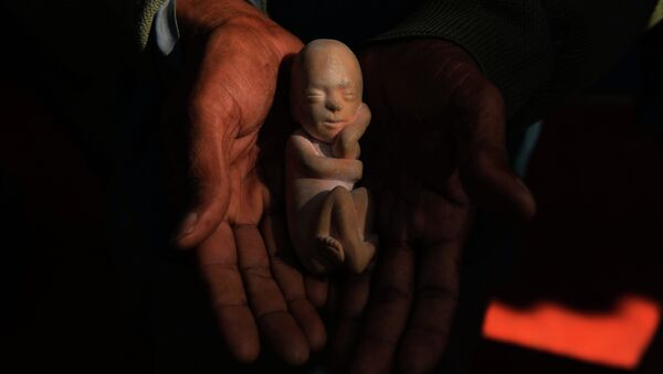 An Indian activist holds a model of a foetus during a protest against abortion in New Delhi on November 26, 2014 - Sputnik Mundo