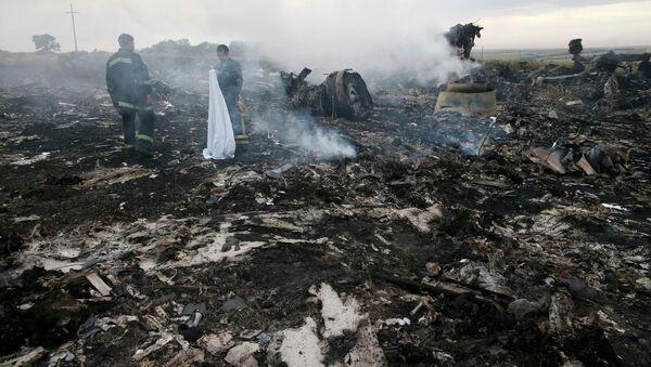 Lugar del siniestro del MH17 (archivo) - Sputnik Mundo