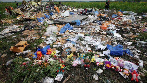 Lugar del siniestro del Boeing MH17 - Sputnik Mundo