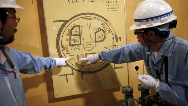 Japón busca nuevas fuentes de combustible tras accidente en Fukushima - Sputnik Mundo