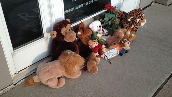 Homenaje al león Cecil cerca de la consulta dental de Walter Palmer, en Minneapolis - Sputnik Mundo