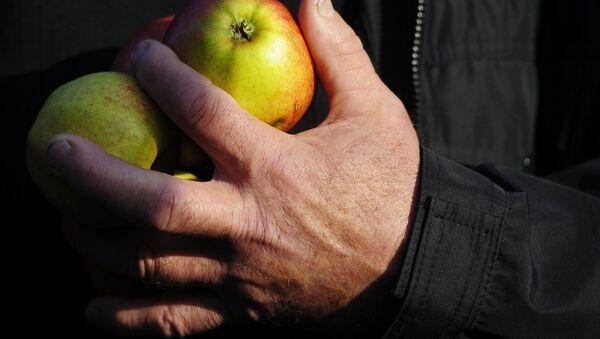 Акция протеста фермеров и садоводов Польши прошла в Варшаве - Sputnik Mundo