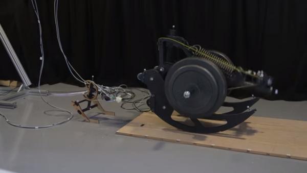 Un robot-madre construye robots-hijos - Sputnik Mundo